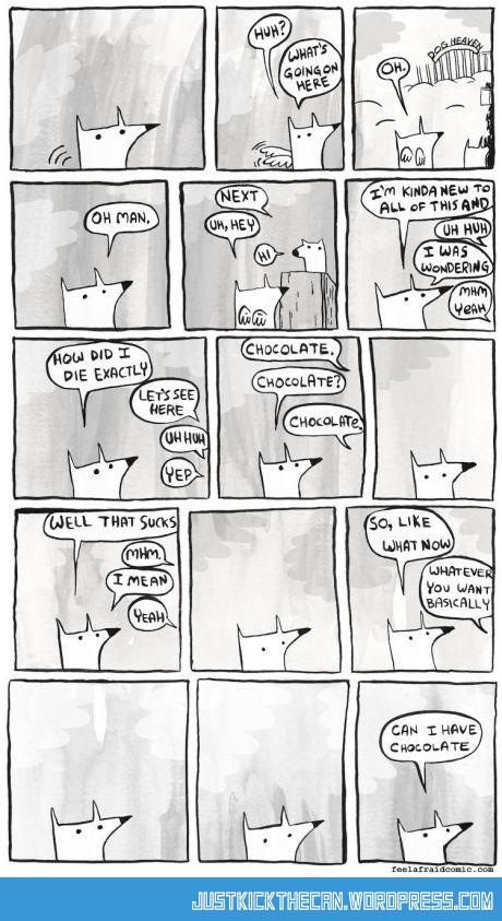 funny-dog-heaven-chocolate