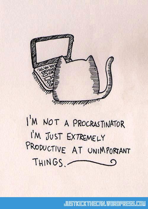 funny-procrastination-cat-cell